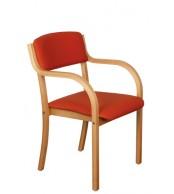 Jídelní židle FIONA, masiv buk - Z137